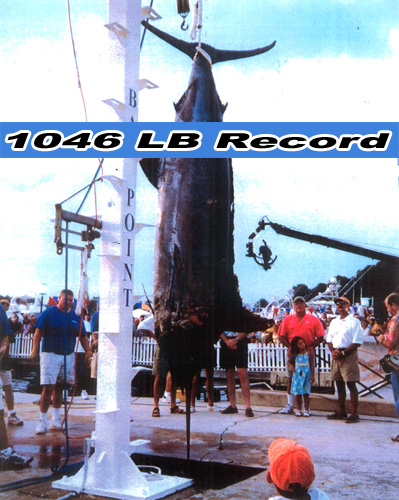 Finest Kind History: Record Marlin Catch